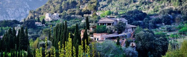 Hochzeitsplaner Valldemossa Mallorca