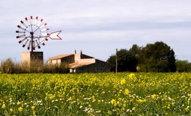 Mallorcas Windmühlen Hochzeits-Location