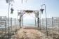 Strandhochzeit Mallorca