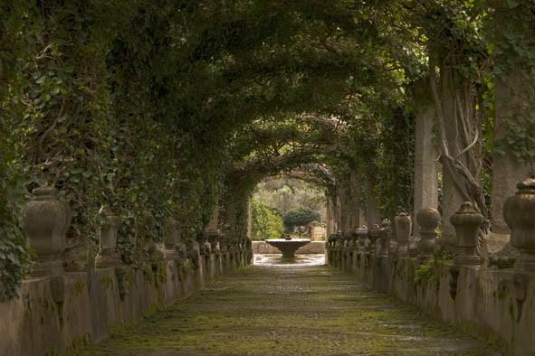 Gärten Alfabia Mallorca